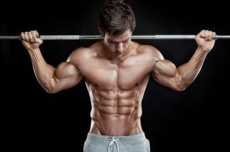 Conceitos Básicos de Força e Resistência Muscular Localizada
