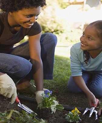 A educação ambiental está ligada ao direito a saúde