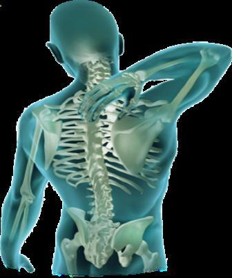 A atuação da fisioterapia preventiva em LER/DORT no âmbito empresarial