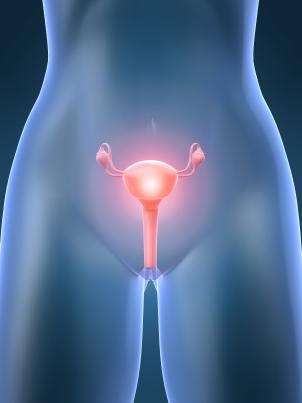 A dispareunia é caracterizada pela dor genital no ato sexual