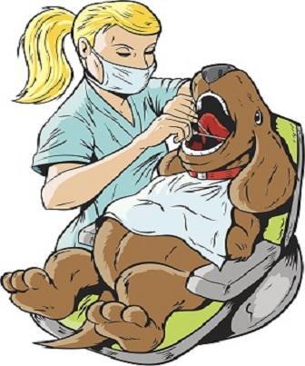 Aspectos Ultrassonográficos Normais: Estômago canino e felino