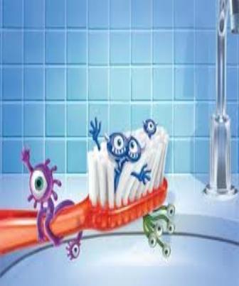Escovas dentárias podem transmitir enteroparasitoses para os seres humanos