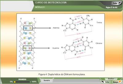 Curso Biotecnologia