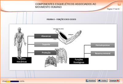 Curso Biomecânica