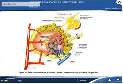 Curso Atualidades em Diabetes Mellitus