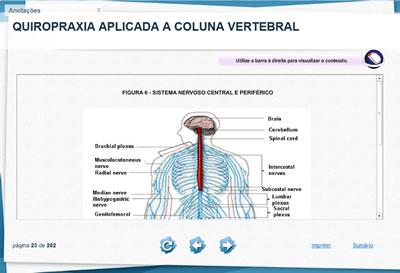 Curso Quiropraxia Aplicada à Coluna Vertebral