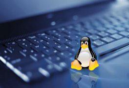 Curso Online de Aprendendo Linux: Fundamentos