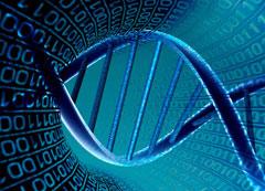 Curso Bioinformática