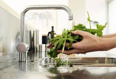 Higiene e Vigilância Sanitária de Alimentos