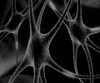 Como modificar seu cérebro por vontade própria