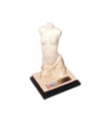 2008 - Prêmio Master Imagem Pessoal
