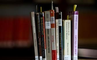 MEC oferece programas como auxílio à educação