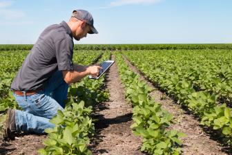 Agricultura Convencional x Agroecologia