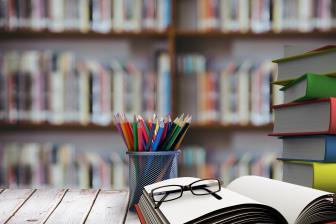 Adaptação à universidade: estudo de caso com calouros - campus Binacional Unifap