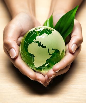 Interações do homem com o meio ambiente
