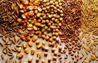 Hidratação de produtos agroindustriais