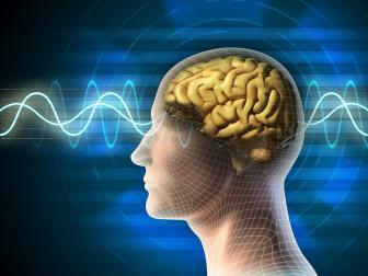 A atuação do neuropsicopedagogo frente ao combate do insucesso escolar