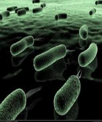Métodos físicos e químicos de controle do crescimento microbiano