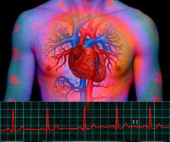 Fundamentos de anatomia e fisiologia