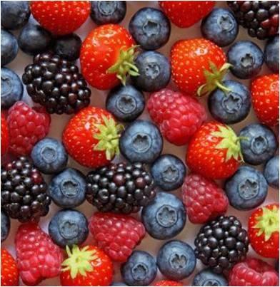 Consumo de Antioxidantes e Saúde