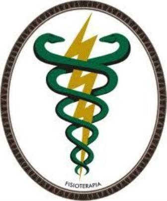 A fisioterapia como método de tratamento e prevenção de reumatismo