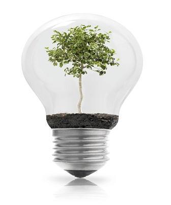 Empreendedorismo ambiental - O que é?
