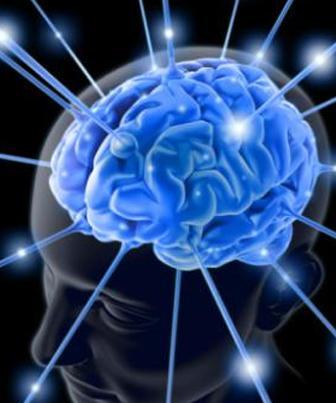 A neurociência e a aprendizagem