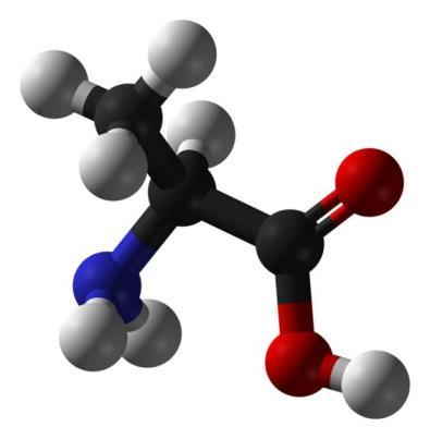 O que é Bioquímica?