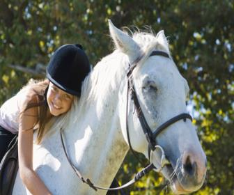 Terapia assistida por animais: Benefícios e Responsabilidades