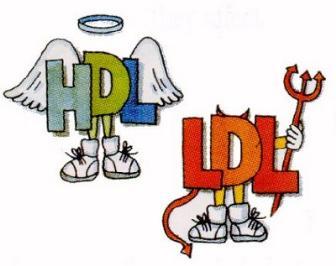Dislipidemia Infantil