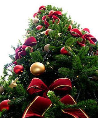 Uma opinião sobre árvores de natal