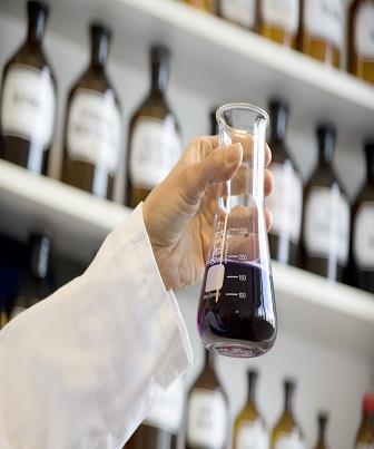 Marcadores bioquímicos da função hepática e proteínas relacionadas