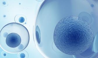 Potencial de ação e repouso de membrana