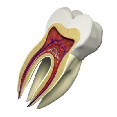 Biomateriais na Odontologia: conforto e discrição