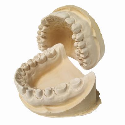 Formato dos dentes