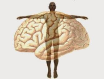 Para que serve o Psicólogo? - A Psicologia na indústria do bem estar