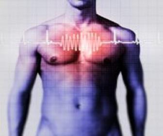 Entenda como funciona o ciclo cardíaco