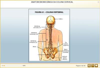 Curso Fisioterapia em Cervicalgia e Lombalgia