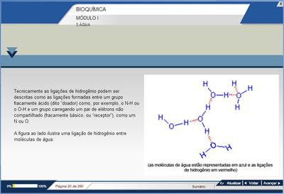 Curso Bioquímica