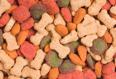 Curso Alimentação e Nutrição de Cães e Gatos