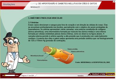 Curso Hipertensão e Diabetes Mellitus em Cães e Gatos