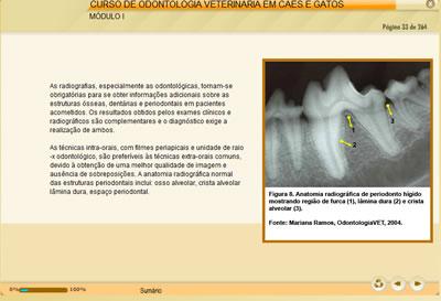 Curso Odontologia Veterinária