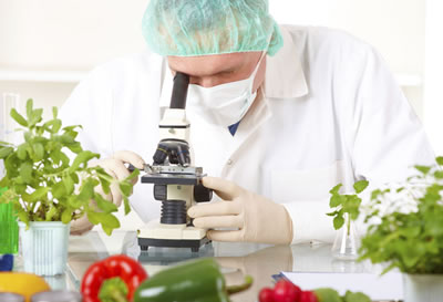 Curso Tecnologia de Alimentos