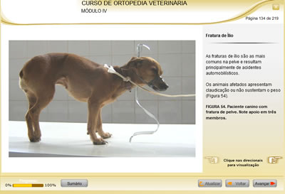 Curso Ortopedia Veterinária
