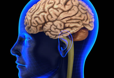 Curso Fisioterapia Aplicada a Neurologia