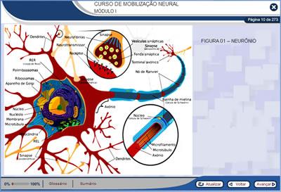 Curso Mobilização Neural
