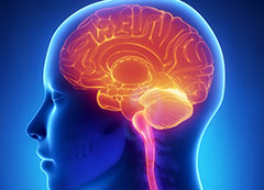 Curso de Avaliação Neuropsicológica