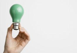 Pós-graduação MBA em Gestão de Negócios Sustentáveis - Especialização lato sensu