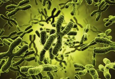 Curso de Citogenética