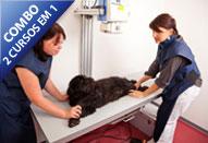 Curso Radiologia e Ultrassonografia em Pequenos Animais